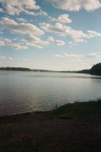 Silta12_heidi_mannila_kuva04_luontojaymparisto